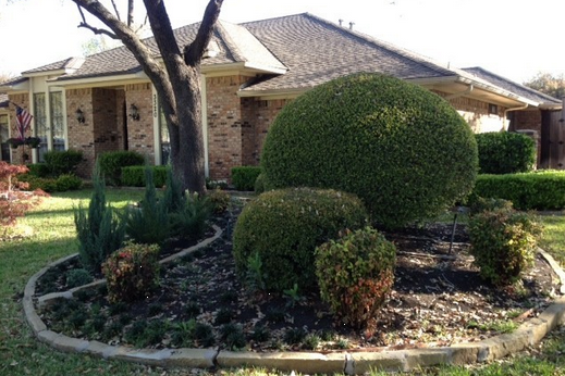Mission Ridge Residential Care In Plano