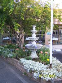 Sky Park Gardens In Sacramento, California | Sacramento | Cost, Ratings,  Reviews, And License
