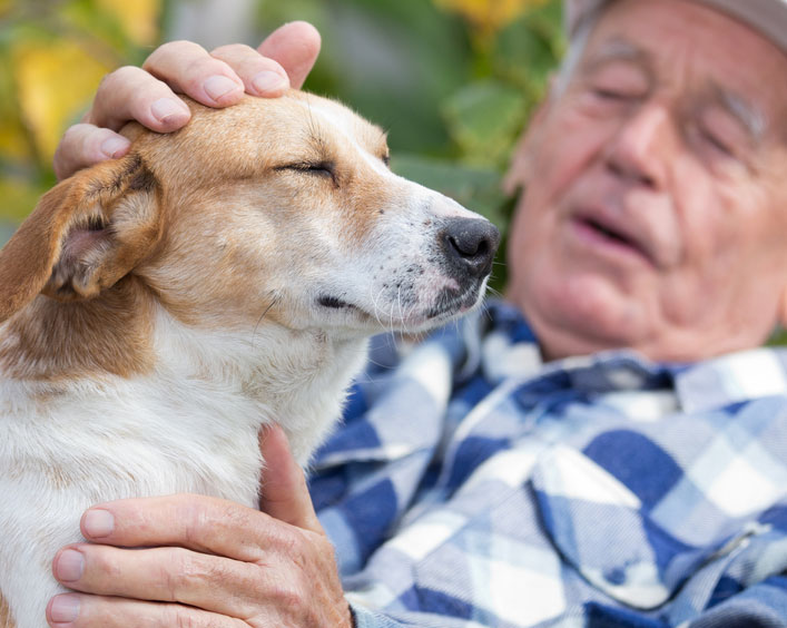 Image result for Pets can An antidote for loneliness